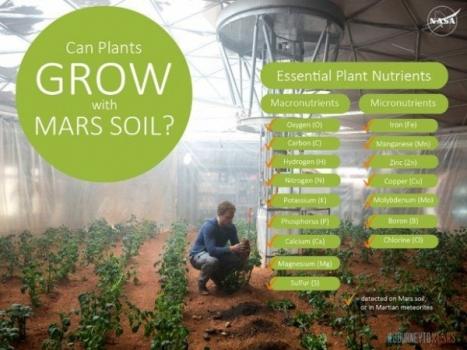 火星土壤含有植物生長所需的營養物質