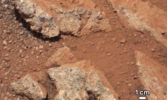 火星上的鵝卵石