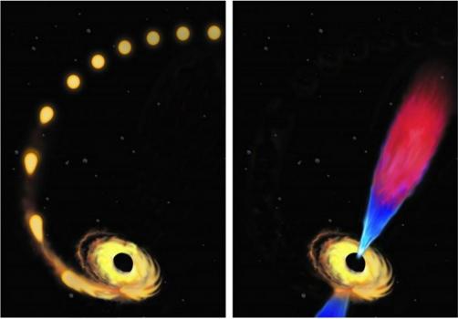 畫家筆下恆星被黑洞摧毀前和後的過程