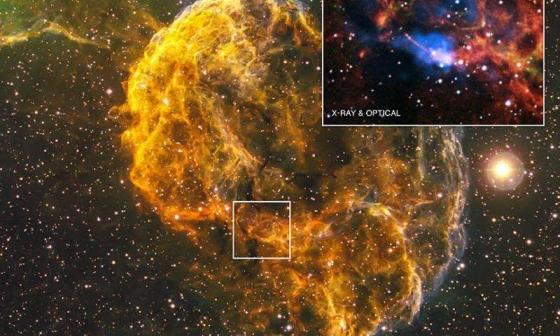 IC 443 水母星雲