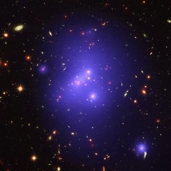 IDCS J1426.5+3508 星系團