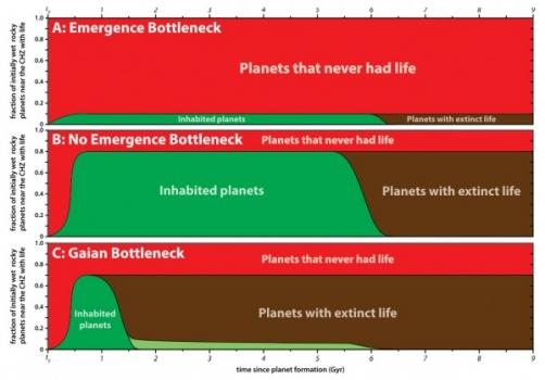 不同的瓶頸的情況和它們的演化預測