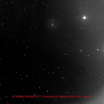由清田誠一拍攝的大熊座超新星確認照片