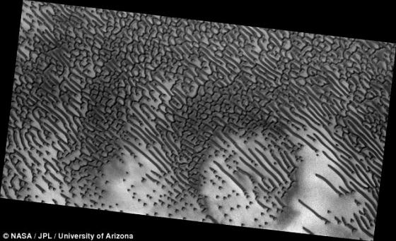 火星北極冠南面哈高沙丘照片
