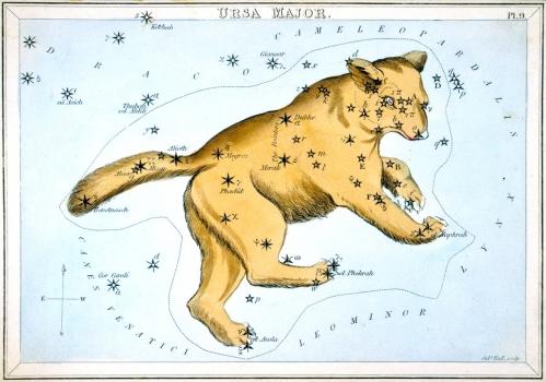 構成大熊座的恆星
