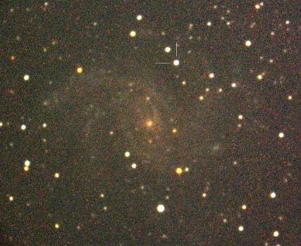 仙王座NGC 6946星系的超新星