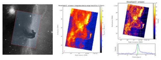 獵戶座馬頭星雲紅外線動態圖