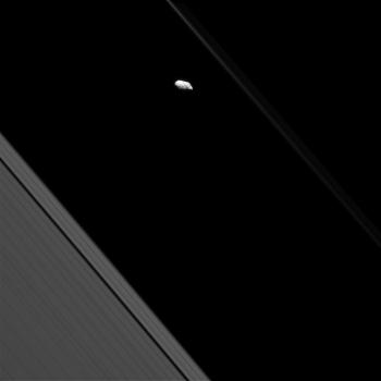 卡西尼號飛近土星環時拍攝土衛十六的照片