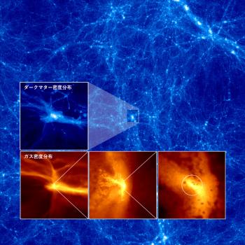 從模擬得到黑洞形成的暗物質分佈
